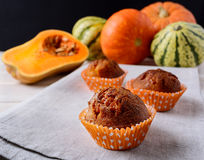 Sweet pumpkin muffins and ripe squashes Royalty Free Stock Images