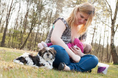 Sweet Puppy While Mother Is Feeding Her Daughter Royalty Free Stock Photography