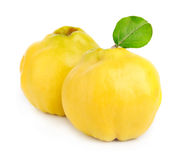 Sweet quince with leaves Royalty Free Stock Images