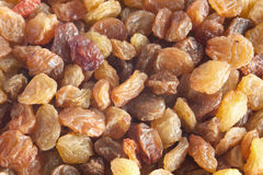 Sweet raisins Royalty Free Stock Images