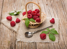 Sweet raspberries in basket  on the wooden table. Small basket with fresh raspberries on wooden background Royalty Free Stock Photo