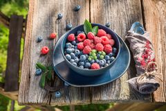 Sweet raspberries and blueberries on old wooden rustic table. Session in outside Royalty Free Stock Photos