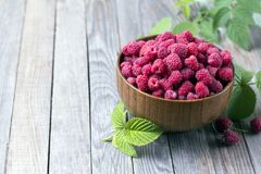Sweet raspberries in bowl on wooden table. Close up, high resolution product. Sweet raspberries in bowl on wooden table. Close up Royalty Free Stock Image