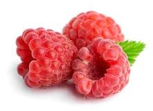 Sweet raspberries Royalty Free Stock Photos