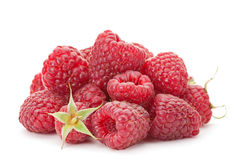 Sweet raspberry Stock Photos