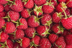 Sweet raspberry as a background. Royalty Free Stock Photography