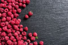 Sweet raspberry on black slate. Copy space. Top view. High resolution product Stock Photography