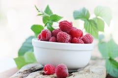 Sweet raspberry Stock Photos