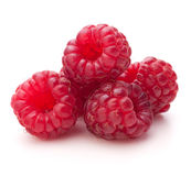Sweet raspberry isolated on white background cutout Royalty Free Stock Photography