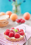 Sweet raspberry tartlet. Sweet tartelette with pudding and raspberries Stock Photo