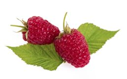Sweet raspberry on white background macro. The Sweet raspberry on white background macro Royalty Free Stock Photo
