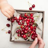 Sweet raw cherry berry delicious background.  royalty free stock photos