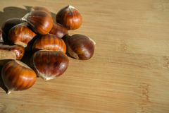 Sweet raw chestnuts on a cutting board close up;. Food background for autumn Stock Images