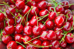 Sweet red cherries Stock Photo