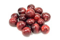 Sweet red cherry plum Royalty Free Stock Photos