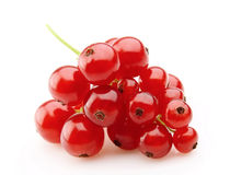 Sweet red currants Royalty Free Stock Images