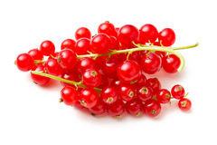 Sweet red currants Stock Photography