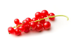 Sweet red currants. On white background Stock Image