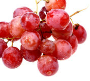 Sweet red grape in water drops stock photography