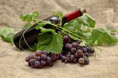 Sweet red grapes with bottle of red wine. Stock Image
