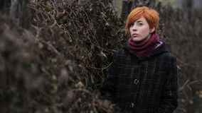 Sweet red-haired girl in a black coat and purple knitted scarf is standing by the fence overgrown with grapevine or ivy, girl or w. Oman on a background of stock images