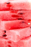 Sweet red melon texture Stock Image