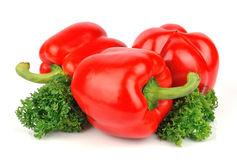 Sweet red pepper and curly parsley Royalty Free Stock Images
