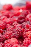Sweet red raspberries natural background Royalty Free Stock Photo