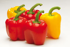 Sweet red and yellow pepper Royalty Free Stock Photo
