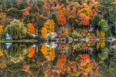 Sweet Reflections Royalty Free Stock Images