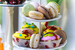 Sweet rich  varicoloured cakes on a plate Stock Images