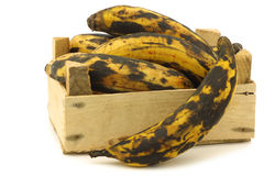 Sweet ripe baking bananas (plantain bananas) Stock Photo