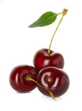 Sweet ripe cherry, berries isolated on white Stock Photography