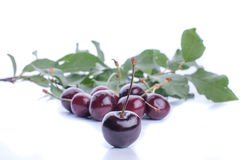 Sweet ripe cherry with leaf Stock Images