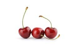 Sweet ripe cherry Royalty Free Stock Image