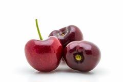 Sweet ripe cherry. Royalty Free Stock Image