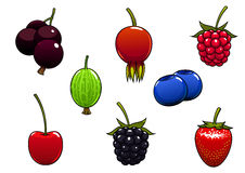 Sweet ripe juicy isolated berries Royalty Free Stock Photography