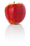 Sweet ripe red apple isolated on white background Stock Images