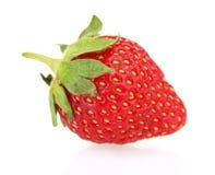 Sweet ripe strawberry Royalty Free Stock Photo