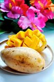 Sweet Ripe Thai Mango  on Wooden Plate. Sweet ripe Thai mango on wooden plate with colorful summer flowers on background royalty free stock photo