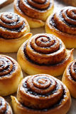 Sweet rolls buns with cinnamon and cocoa. Close-up. Kanelbulle - swedish homemade dessert. Sweet cinnamon rolls buns with spices and cocoa. Close-up. Kanelbulle stock image