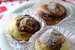 Sweet rolls. With nuts and dried fruits Royalty Free Stock Images