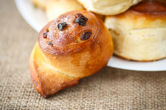Sweet rolls with raisins Stock Photography