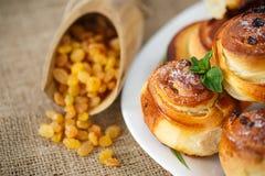 Sweet rolls with raisins Stock Photos