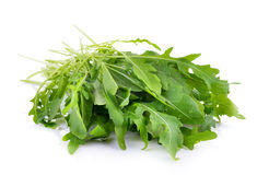Sweet rucola salad or rocket lettuce leaves Royalty Free Stock Photography
