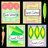 Sweet Seeds. Illustration of spring seed packets. Sweet Williams flower seeds and garden seeds for carrots, peas and corn Royalty Free Stock Images