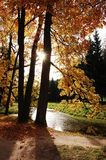 Sweet September. Autumn in the town of Pushkin, Russia royalty free stock images