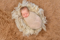 Sweet sleeping newborn on fluffy terry blanket. Sweet sleeping swaddled newborn on fluffy terry blanket, top view Stock Images