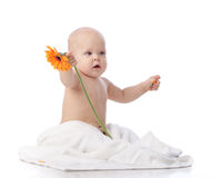 Sweet small baby with flower. Stock Photography
