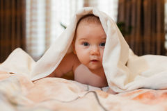 Sweet small baby with  towel Stock Image